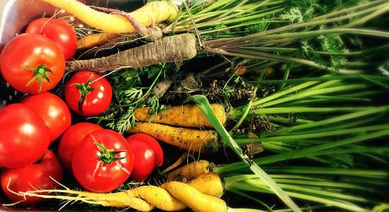 Locally sourced vegetables from farms.